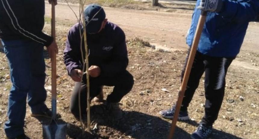 """El HCD de San José se une a la campaña nacional """"Plantamos Memoria"""""""