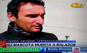 VILLA ELISA SU PERRO APARECIO MUERTO A BALAZOS.