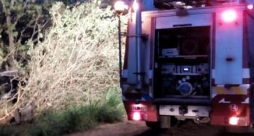 SAN JOSÉ ACCIDENTE DE TRÁNSITO Y SECUESTRO DE VARIOS ELEMENTOS