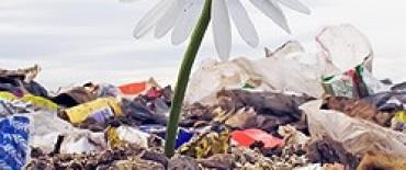 Colón- Recolección diferenciada de residuos